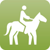Horse riding is the activity of travelling on horseback.